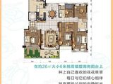 碧桂园太阳城_5室2厅3卫 建面260平米